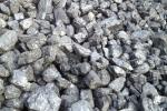Węgiel orzech marcel, piast